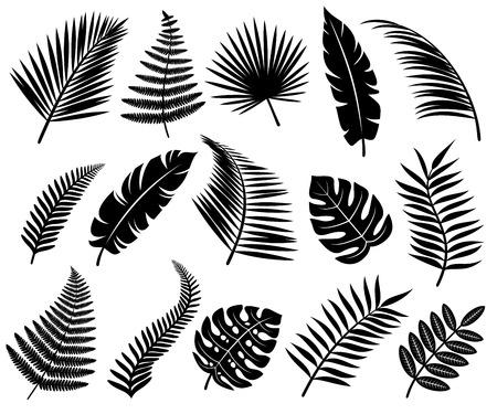 열대 나뭇잎의 설정. 벡터