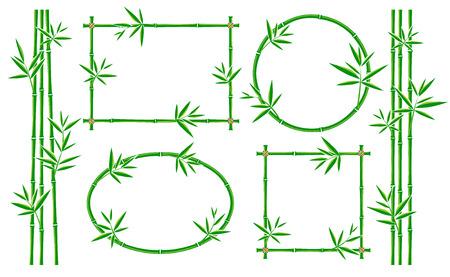 collection Bamboo frame définie. Vecteur