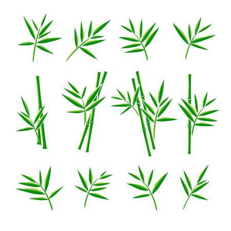 arboles blanco y negro: Bamboo collection set. Vector Vectores