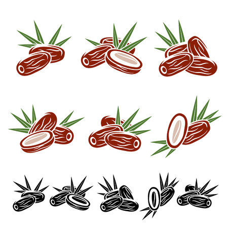 dates fruit: Dates fruit set. Vector Illustration