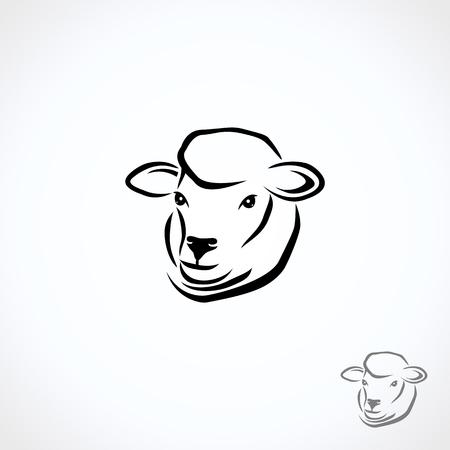 Ovejas y corderos. Vector