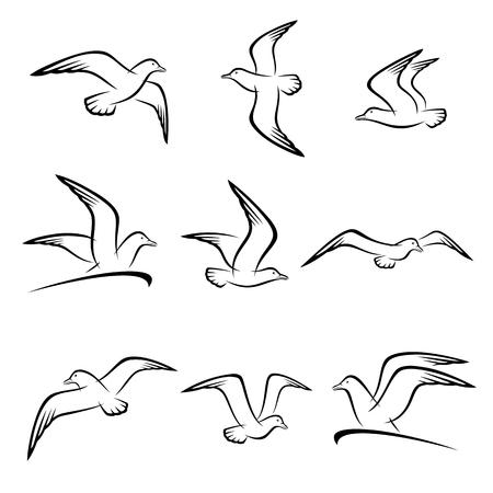 Seagull set. Vector Çizim
