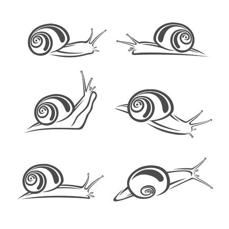 Snail set. Vector Illustration