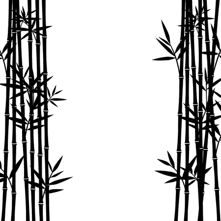 park: Bamboo background. Vector