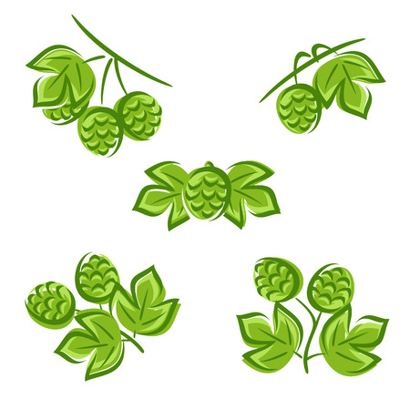 Hop set. Illustration