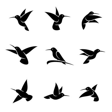 Colibri set. Labels and elements set, edit size and color, vector Stock Illustratie