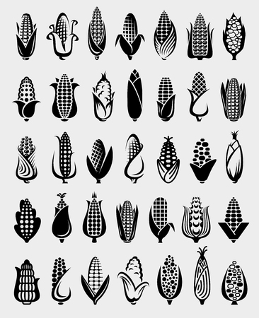 Corn set. Collection icon corn. Vector