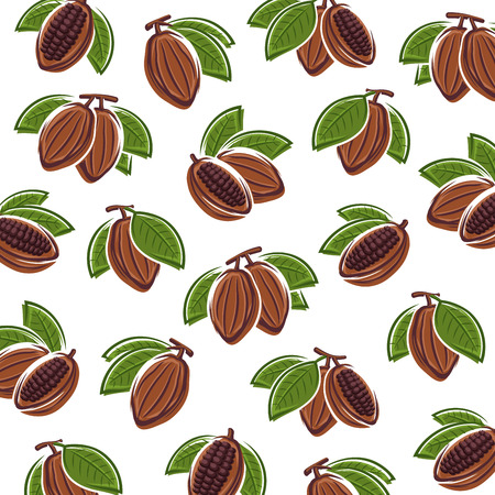 Cacao beans background. Vector