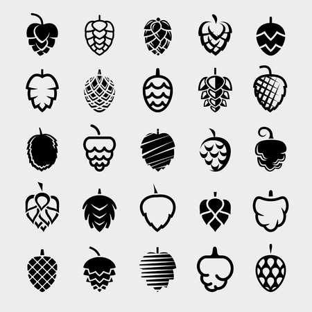 Set di luppolo. Luppoli icona raccolta. Vettore