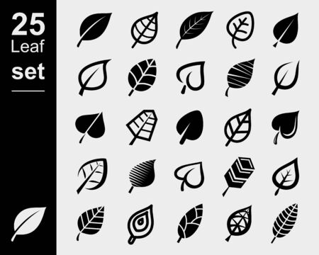 Set of leaves. Collection icon leaves. Vector Imagens - 133677256