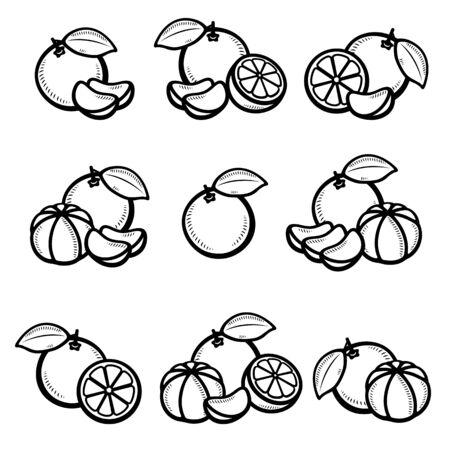 Insieme del mandarino. Mandarino di icone della raccolta. Vettore Vettoriali