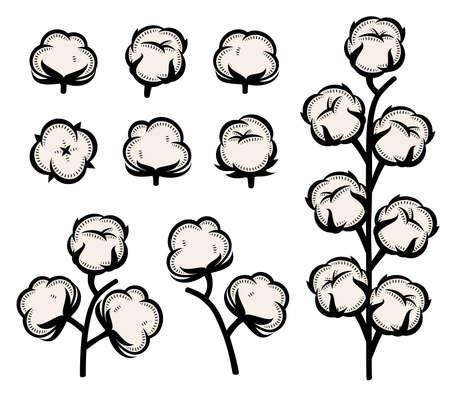 Cotton set. Collection cotton icons. Vector