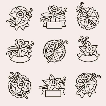 Vanilla labels and elements set. Collection icon vanilla. Vector Иллюстрация