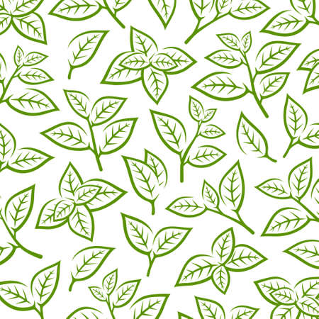 Green tea leaf pattern background. Collection green tea leaf icons. Vector