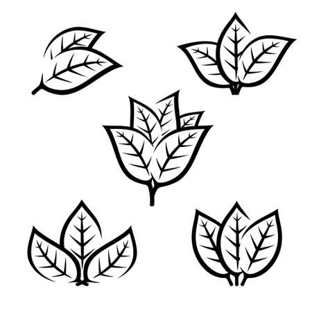 Tobacco leaf icons set. Collection icon tobacco. Vector