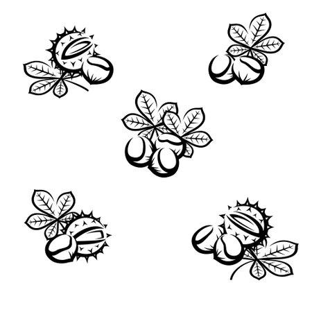 Chestnut set. Collection icon chestnut. Vector
