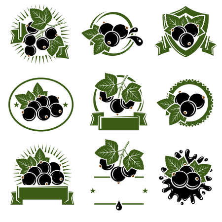 Black currant label and icons set. Icon black currant. Vector illustration