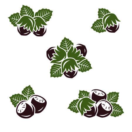 Hazelnut nuts set. Collection icon hazelnut nuts. Vector illustration