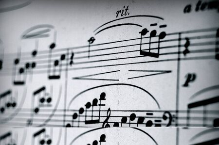 Music camp. a Music notes on paper, musical composition in notes.