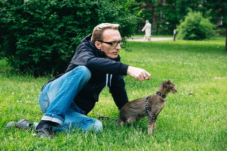 man playing the cat outdoor in summer day on cats first walk