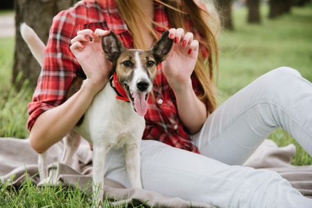 Funny smiling dog with her master. Girl holds the dogs ears to pose. Stock Photo