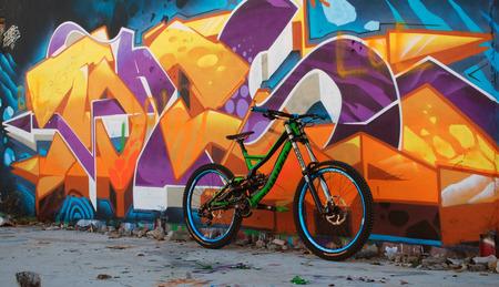 Specialized Demo 8 Downhill-Bike Standard-Bild - 69196449