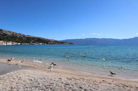 Seascape clear azure water of the Adriatic Sea, seagulls on a pebble beach and mountains on the horizon, the resort town of Baska on the coast of Croatia, Istria Standard-Bild