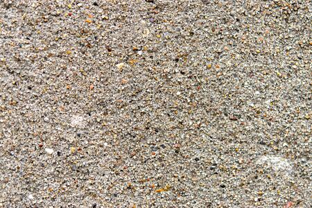 Textured sand plaster, close-up, abstract background.