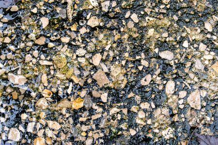 Wet granite after rain, texture of small stones. Reklamní fotografie