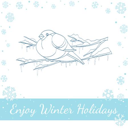 bullfinch: Bullfinch sitting on winter branch. Vector line art handdrawn illustration