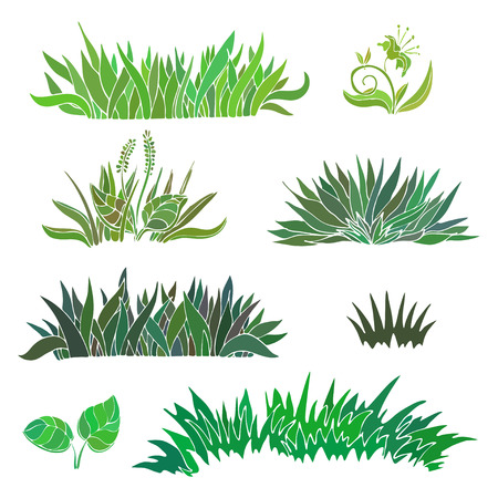 grass: grass isolated on white background. illustration.