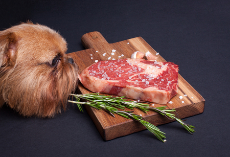 The red hungry dog tries to steal a piece of marble meat from the table. Steak ribeye with spices on a wooden board. Stock Photo