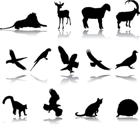 Set Animals. Vector  photo