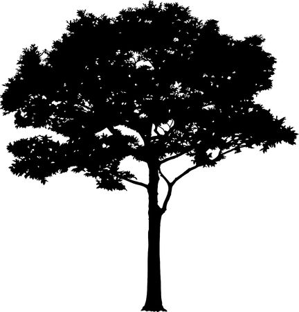 tree logo: Silhouette a tree. Similar images can be found in my gallery.