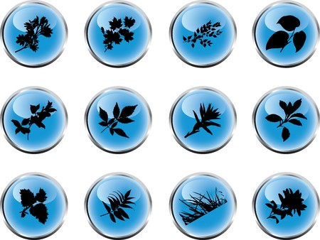 The set from silhouettes of leaves, is presented in the form of 12 buttons.  photo