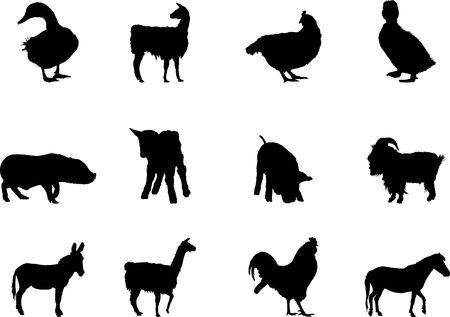 Animals. Set of 12 round vector buttons for web  photo