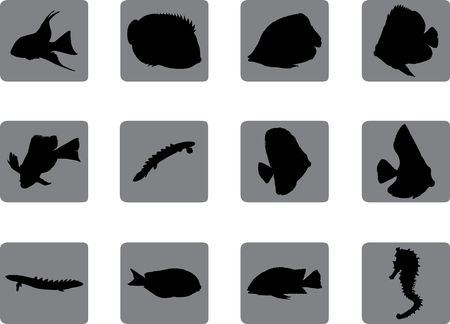 Set fish. Vector Stock Photo - 4706513