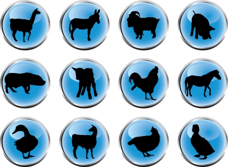 Animals. Set of 12 round vector buttons for web  Stock Photo - 4706620