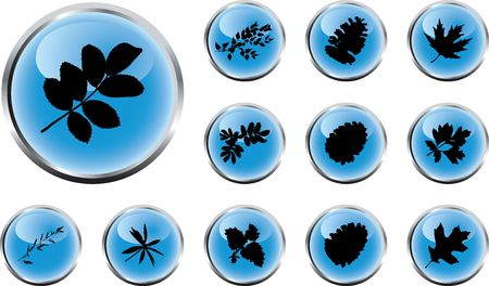 The set from silhouettes of leaves, is presented in the form of 12 buttons. Stock Photo