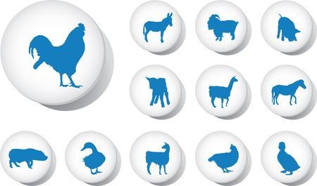 Animals. Set of 12 round buttons for web Stock Photo