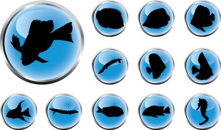 Fish. Set of 12 round buttons for web Stock Photo - 4739699