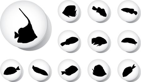 Fish. Set of 12 round buttons for web Stock Photo - 5044575