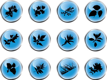 The set from silhouettes of leaflets of plants, is presented in the form of 12 buttons. Stock Photo - 7085070