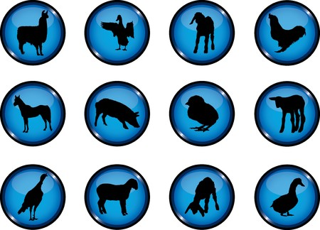 Animals. Set of 12 round buttons for web