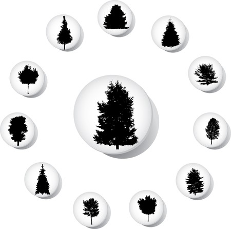 The set from silhouettes of trees, is presented in the form of 12 buttons.
