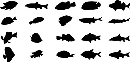 Fish. Set of 20 for web Stock Photo - 7295346