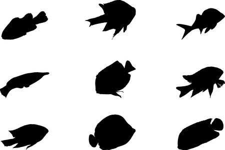 Fish. Set of 9 round buttons for web Stock Photo - 7295431