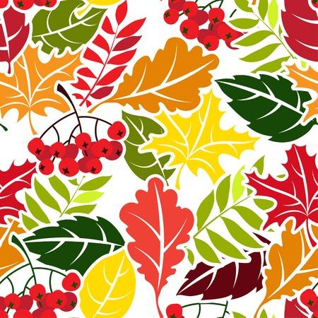ashberry: Vector Illustration Autumn leaves seamless pattern. Flat style
