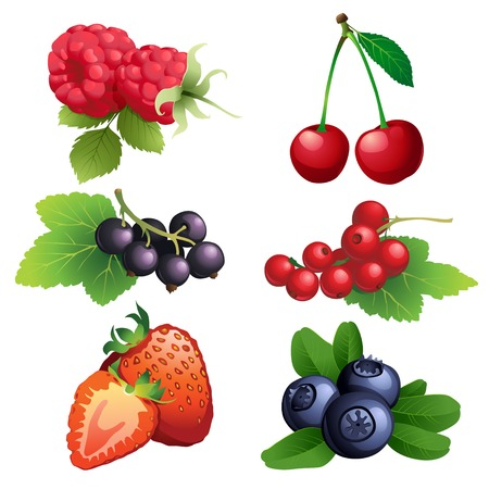 Vector Illustration Icon of Ripe strawberry, raspberry, cherry, blackberry, black and red currant, blueberry with leaves