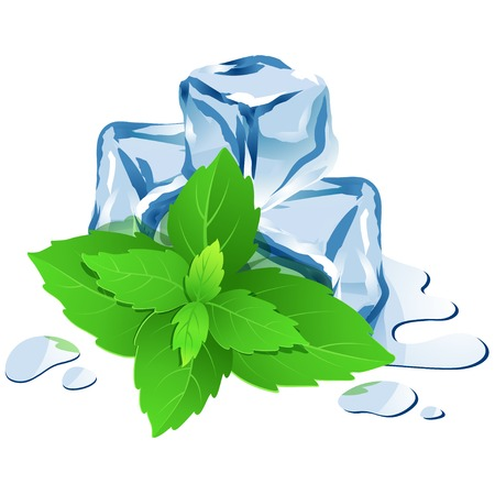Vector Illustration Icon of Ice cubes with mint isolated on white